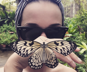 butterfly, girly, and luxury image