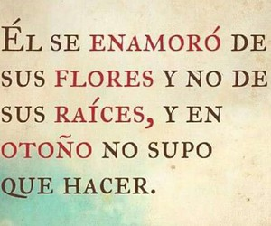 flores, frases, and Raices image
