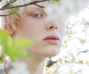 albino, pale, and beauty image