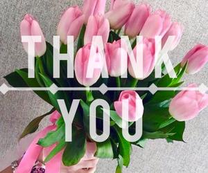 merci, thank you, and danke image