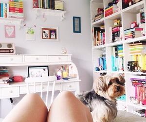 dog, girl, and girly image