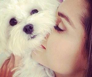 dog, girl, and love image