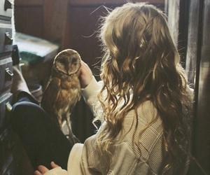owl, girl, and hair image