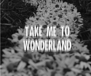 wonderland, flowers, and black and white image