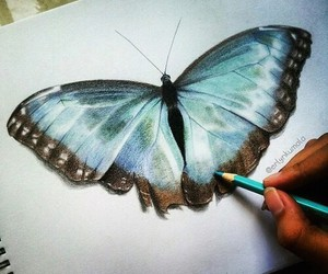 art, butterfly, and drawing image