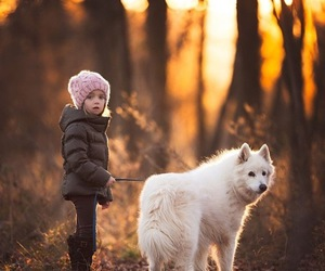 beautiful, dog, and puppy image