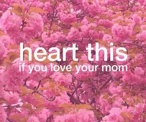flowers, mother's day, and heart image