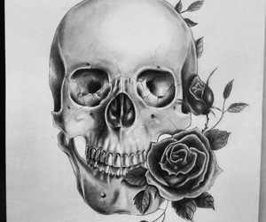 flowers, rose, and skull image
