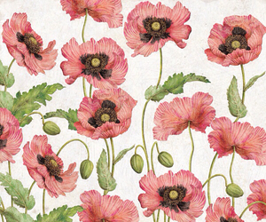 background, flowers, and маки image