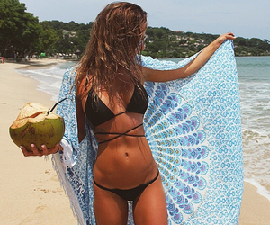 beach, beauty, and coconut image