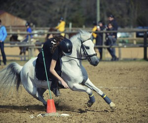 pony games, oxbow, and pony mounted games image