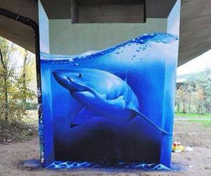 shark, art, and graffiti image