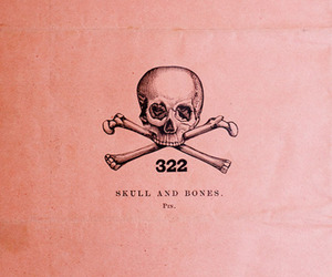 skull, bones, and pink image