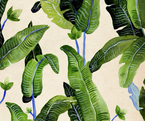 plants, green, and art image