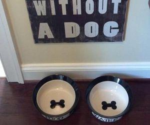 dog and home image