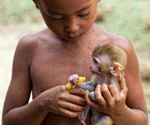 adorable, kid, and monkey image