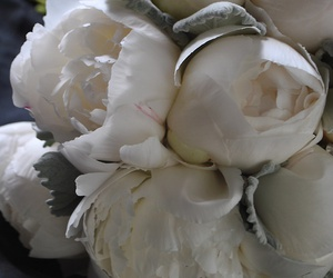 flowers, peonies, and white image