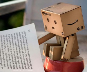 book and danbo image