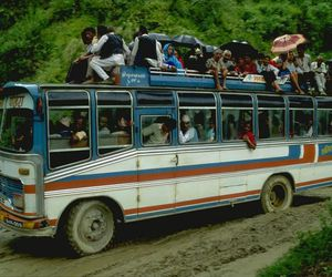 bus, jungle, and crowded image