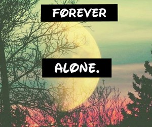 alone, forest, and forever image