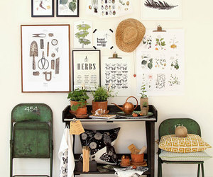 plants, green, and herb image