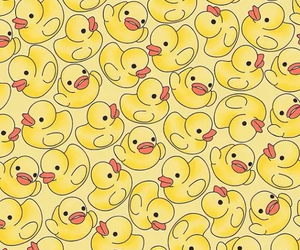 duck, yellow, and wallpaper image