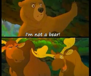 brother bear, disney, and moose image