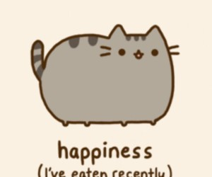 cat, pusheen, and happiness image