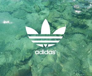 adidas, summer, and water image