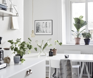 interior, decoration, and white image