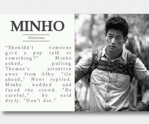 Minho, the maze runner, and maze runner image
