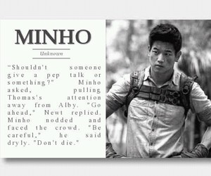Minho, the maze runner, and maze runner image