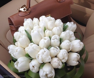 flowers, tulips, and cute image