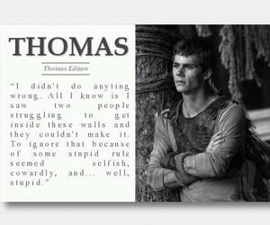 thomas, the maze runner, and maze runner image