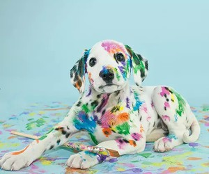 pup, cute+, and easter+ image
