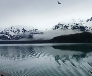 alaska, beautiful, and glacier image