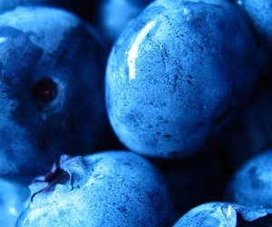 blueberry, berries, and fruit image