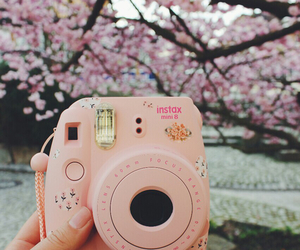 pink, camera, and tumblr image