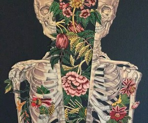 flowers, skeleton, and skull image