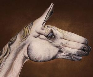 horse, hand, and art image