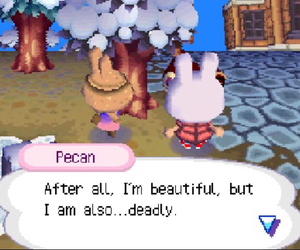 quotes, animal crossing, and funny image