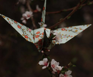 flowers, origami, and photography image