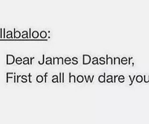 newt, the maze runner, and james dashner image