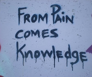 pain, knowledge, and quote image