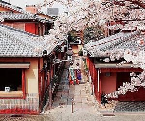 japan, kyoto, and sakura image