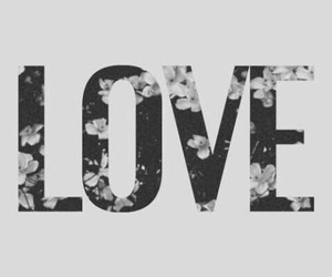 amor, flores, and love image