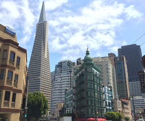 financial district, photography, and transamerica pyramid image