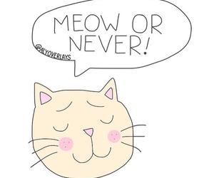 cat, kawaii, and kitty image
