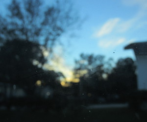 blurry, nature, and sun image