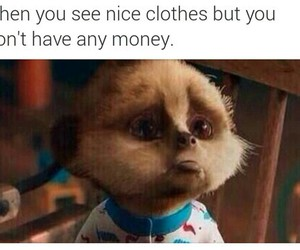 clothes and money image